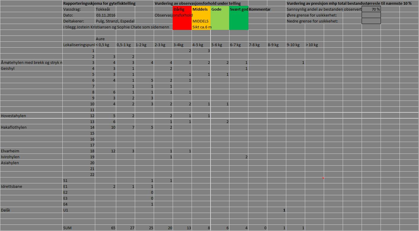 Dataene fra drivtellingen i Tokkeåi 3. november 2016