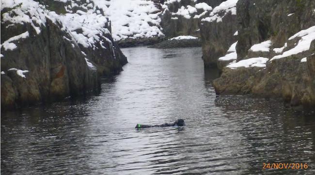 Dykking i øvre del av Åmøtehylen november 2016